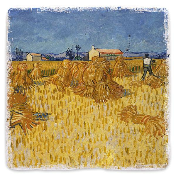 Sklizeň obilí v Provence